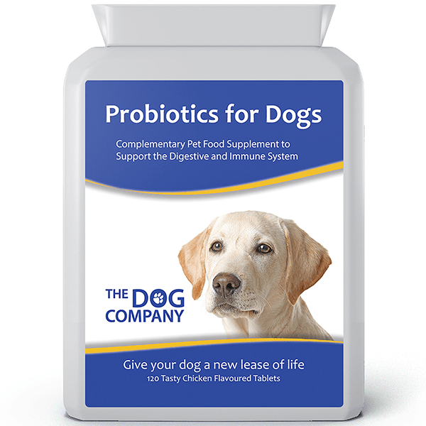 Probiotics For Dogs | The Dog Company