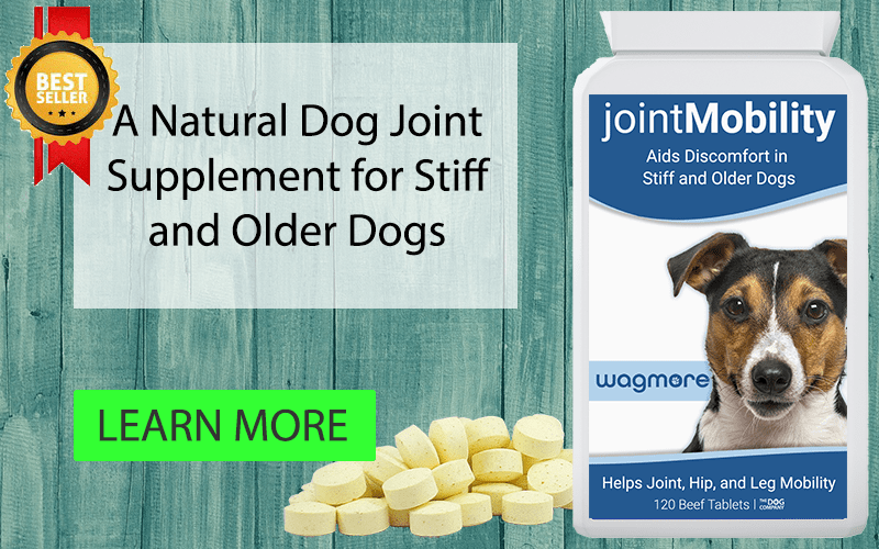 Joint Mobility | The Dog Company